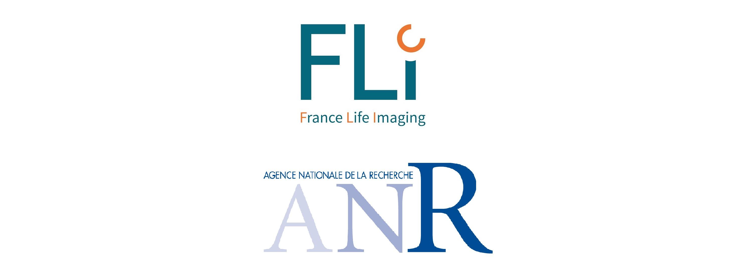 logo FLI-ANR